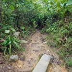 Meneroka Bukit Gasing, Petaling Jaya